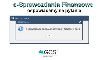 e- Sprawozdania Finansowe – odpowiadamy na pytania
