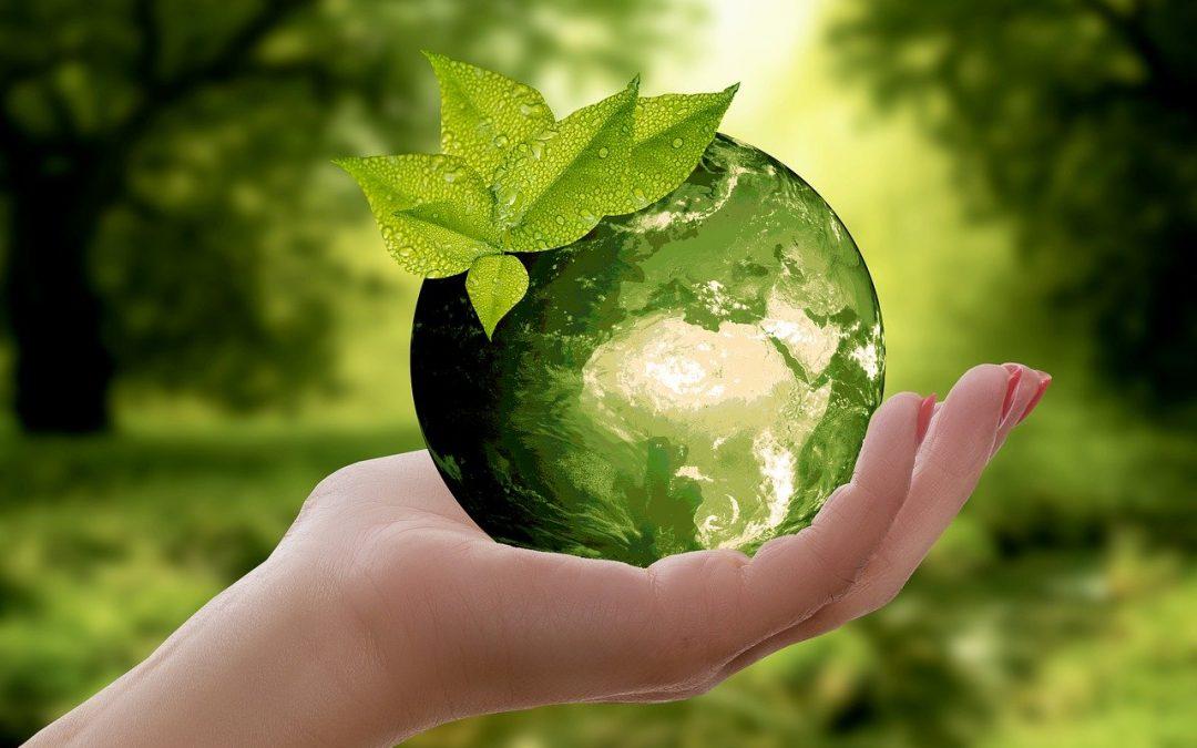 BDO – Baza danych o odpadach na wydrukach